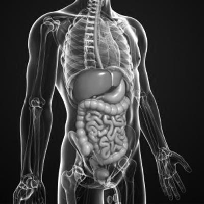 Cirugía gastrointestinal